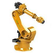 Ever Robot RH60 фото