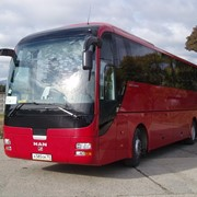 Аренда автобуса в Сочи фото