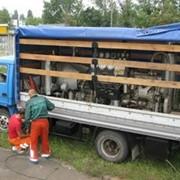 Прочистка и восстановление пропускной способности трубопроводов и канализационных коллекторов фото