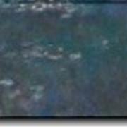 Модульная картина Лилии (1914-1926) [3], Моне, Клод фото