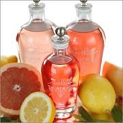 Технические условия спирты ароматные из цитрусовых ТУ 9182-210-37676459-2013 фото