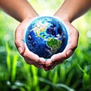 Дистанционное обучение. Проекты мероприятий по охране окружающей среды. фото