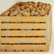 Ящики для картофеля фото