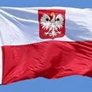 Однократная шенгенская виза в Польшу фото