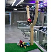 Angry Birds Live аренда аттракциона Харьков фото