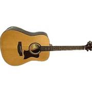 Акустическая гитара Hohner HW-350 фото