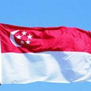 Регистрация компаний в Сингапуре, консалтинговое и налоговое обслуживание фирм в Сингапуре фото