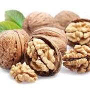 Сухофрукты грецкие орехи. фото