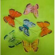Бабочка 7см,перо,магнит (уп/12шт) фото