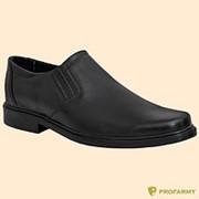 Туфли мужские 710 фото
