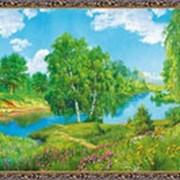 Гобеленовая картина 40х60 GS334 фото
