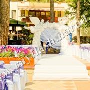 Живая арка на свадьбу фото