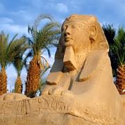 Отдых в Каире фото