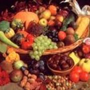 Производство плодовоовощных консервов фото