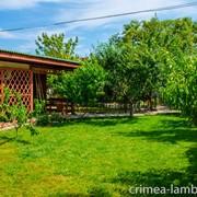 Гостевой дом Ламбада, пос. Заозерное, Крым фото