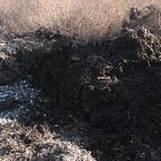 Очистка и обезвреживание грунтов загрязненных нефтепродуктами фото