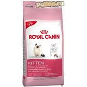 Royal canin kitten - сухой корм для котят до 12 месяцев роял канин киттен фото