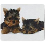 Коврик для мыши с шелковым покрытием Defender - Silk, прямоугольный, картинки с изображениями домашних питомцев фото