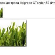 Трава искусственная Italgreen XTender 52 (Италия) фото