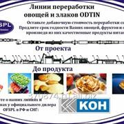 Пищевое оборудование Odtin для производства продуктов фото