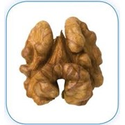 Ядра орехов в Молдове фото