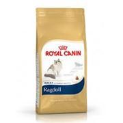 Ragdoll Royal Canin корм для взрослых кошек, Рэгдолл, Пакет, 10,0кг фото