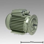 7038-2206-010 Мотор трёхфазного тока 0,55kW 3000/3600RPM 230/400V фото
