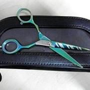 Ножницы для стрижки EFEL фото