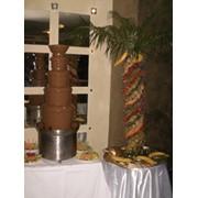 Аренда шоколадного фонтана с фруктовым декором фото