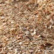 Измельчение древесносодержащих отходов, Опилки древесные, стружка, загрязненные маслами фото
