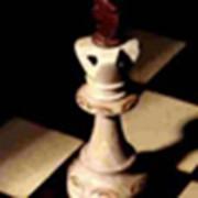 Дистанционное онлайн-обучение шахматам фото