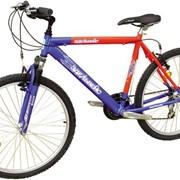 Велосипеды спортивные, туристические Черкассы, база спорттоваров фото