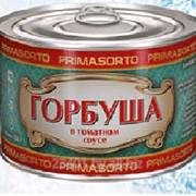 Горбуша в томатном соусе. фото