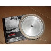 Шлифовальный диск для станка GEMY-8 Pos1 фото