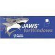 Noname Обновление ПО JAWS for Windows Pro на 2 версии арт. ЭГ13939 фото
