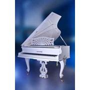 Реставрация рояля и пианино всех моделей в Харькове и Харьковской области фото