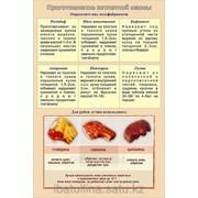 Плакат Приготовление котлетной массы Г.18 фото
