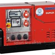 Генератор газовый бесшумный Endress Silent ESE 1408 DBG ES DUPLEX фото