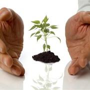 Сотрудничество и помощь в продаже ваших товаров/услуг фото