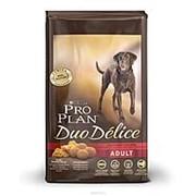 Pro Plan 10кг Duo Delice Сухой корм для взрослых собак средних и крупных пород Говядина фото