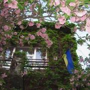 Сдам квартиру посуточно Львов, квартиры посуточно от хозяина,без посредников, посуточно фото