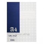 Книга конторская A4, 48 листов, в клетку RA4M48 фото