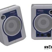 Активные студийные мониторы Edirol MA1EX USB (пара) фото