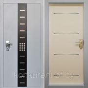 Стальная дверь Pandoor Evolution фото