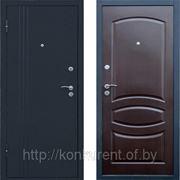 Входная металлическая дверь Бастион 1 фото
