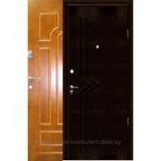 Металлическая дверь Montе Bello M186 (полимер/мдф, минвата) фото