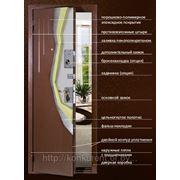 Общая информация о дверях Меги фото
