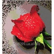 """Набор для рисования камнями """"Роса на красной розе"""" 7290 фото"""