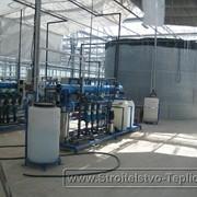 Монтаж системы полива в промышленной теплице фото