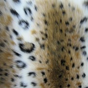 Мех искусственный рысь фото